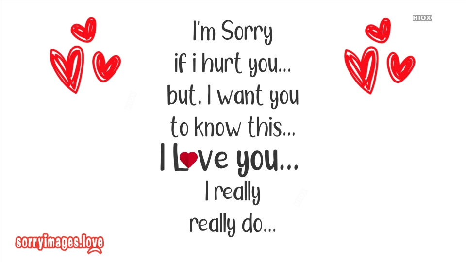 Asking Sorry To Lover