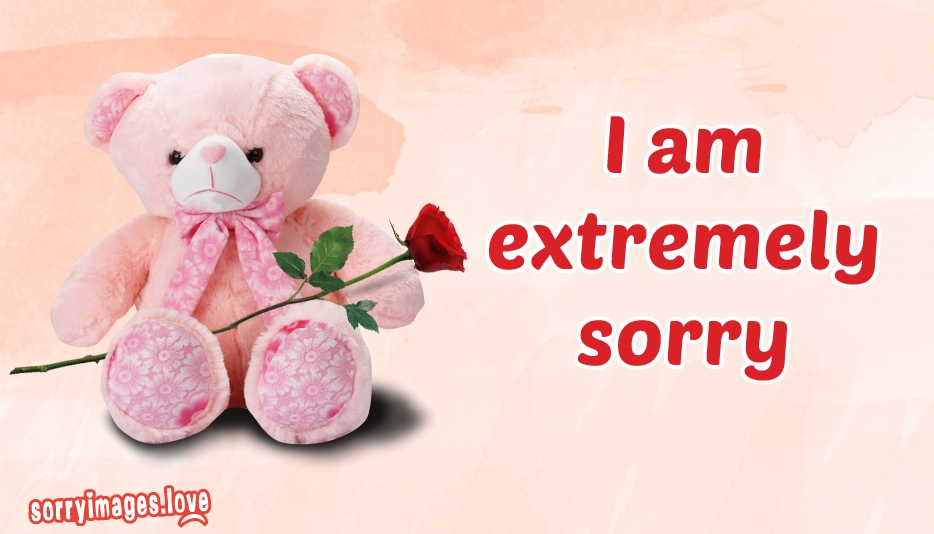 Sorry Images with Teddy Bear