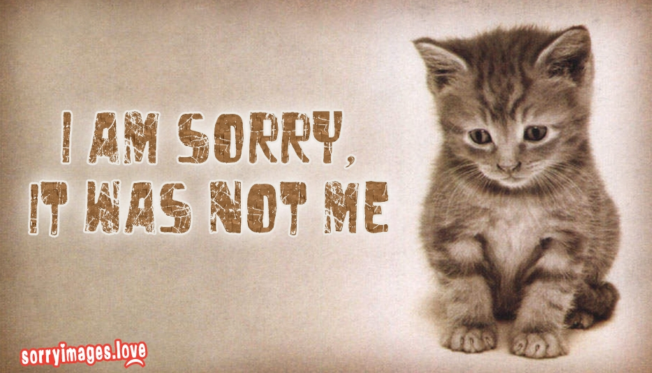 I am Sorry, It was Not Me @ SorryImages.Love