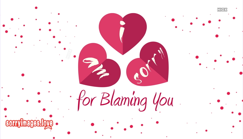 Sorry For Blaming You Quotes