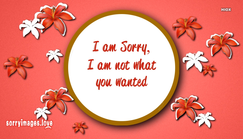 I Am Sorry , I Am Not What You Wanted