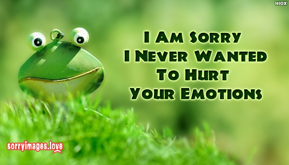 I Am Sorry I Never Wanted To Hurt Your Emotions - Sorry Images For Boyfriend