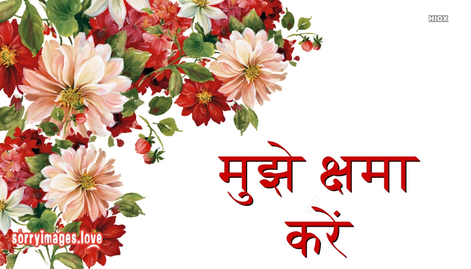 I Am Sorry Image In Hindi