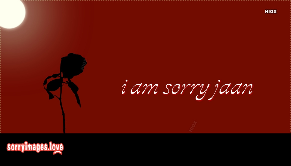 Sorry Jaan Status, Images