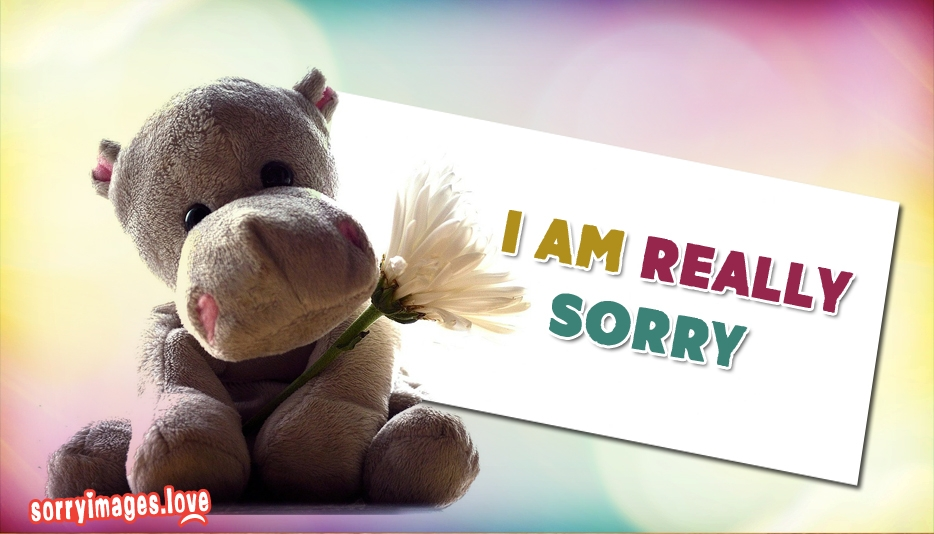 i am sorry my love wallpapers - photo #22