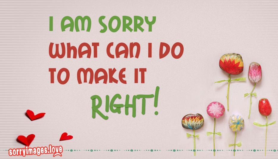 i am sorry what can i do to make it right sorryimages love