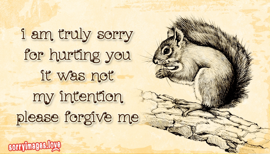 I Am Truly Sorry For Hurting You It Was Not My Intention Please