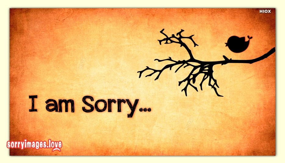 Im Sorry Images