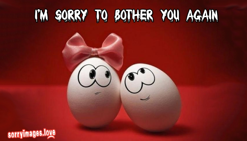 Im sorry to bother you again sorryimageslove im sorry to bother you again altavistaventures Choice Image