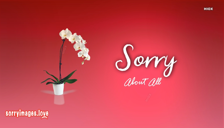 Sorry About All Greetings
