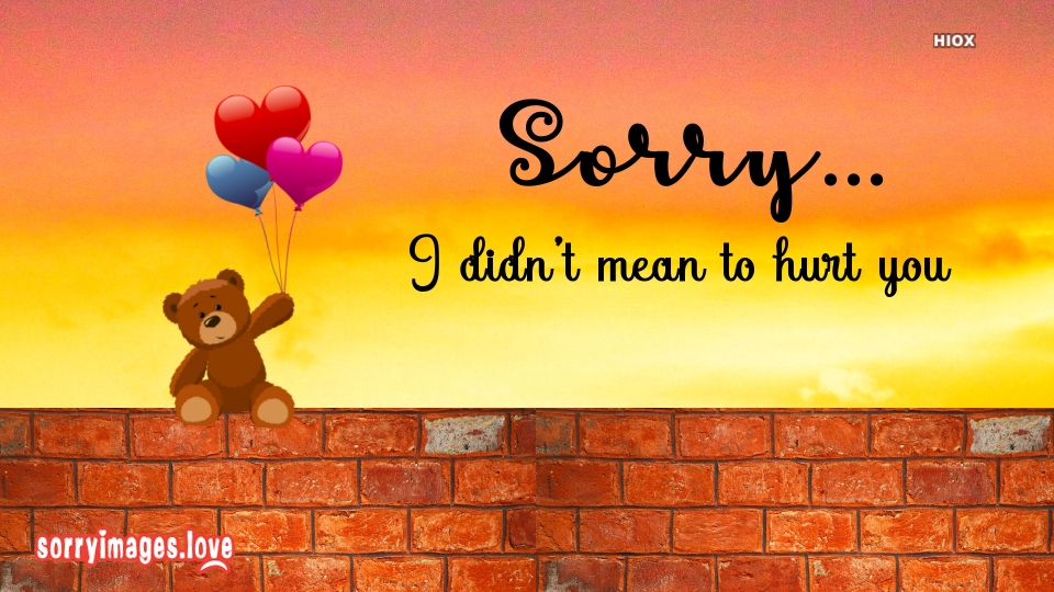 Sorry for Hurting Message