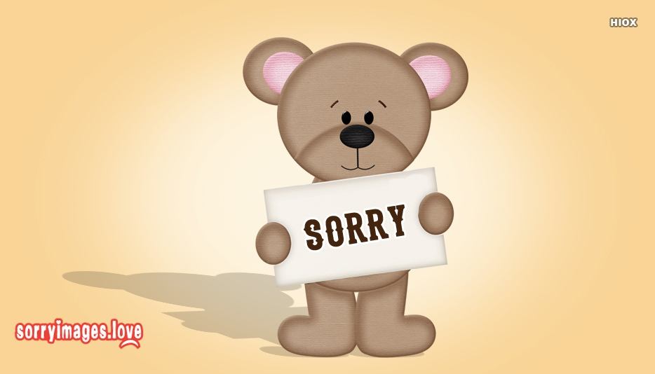 Sorry Bear Pictures