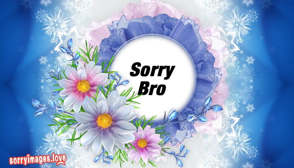 Sorry Bro @ Sorryimages.Love