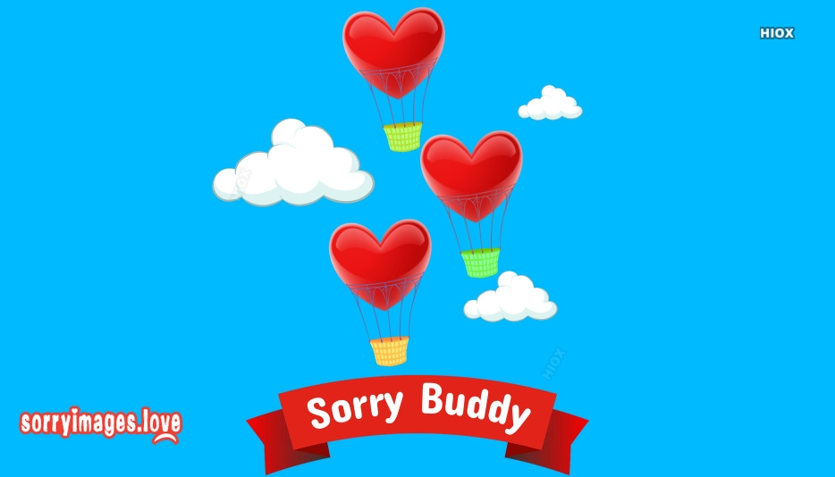 Sorry Buddy Images