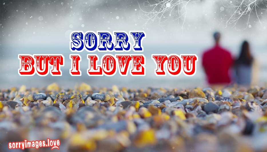 Sorry But I Love You - Sorry I Love You Images