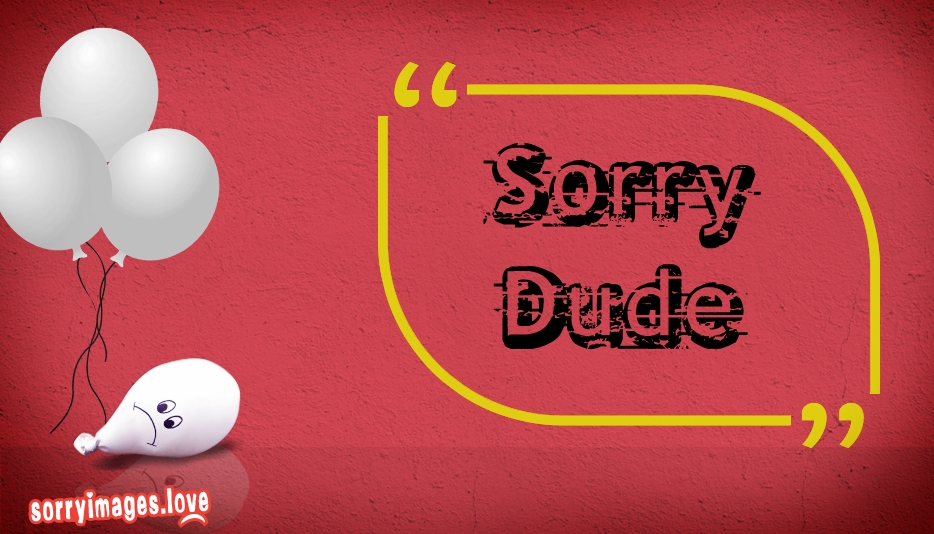 Sorry Dude @ SorryImages.Love