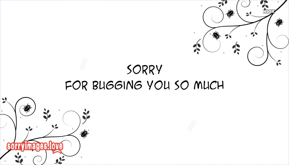 Sorry For Bugging You So Much