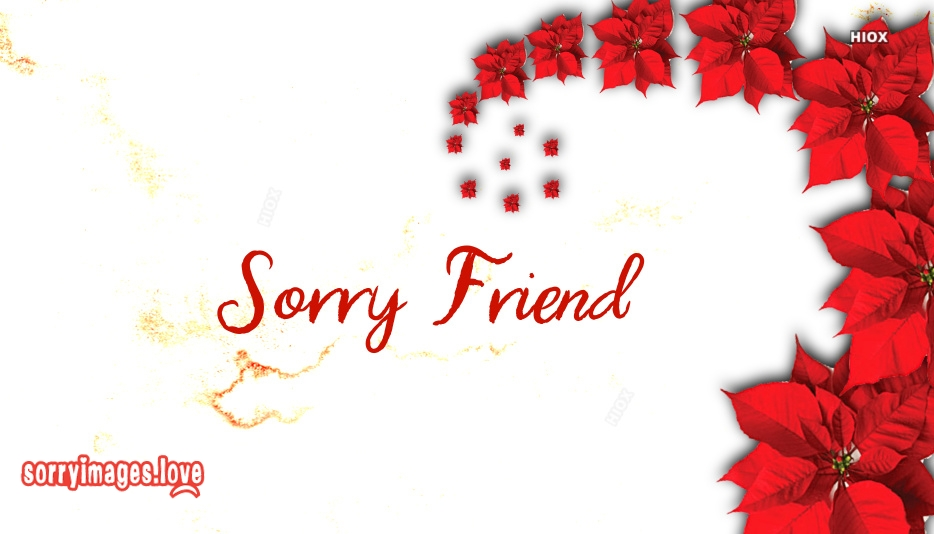 Sorry Friend Image