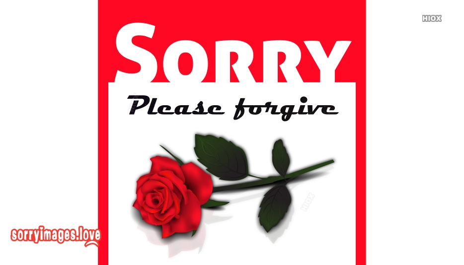Sorry Hd Wallpaper