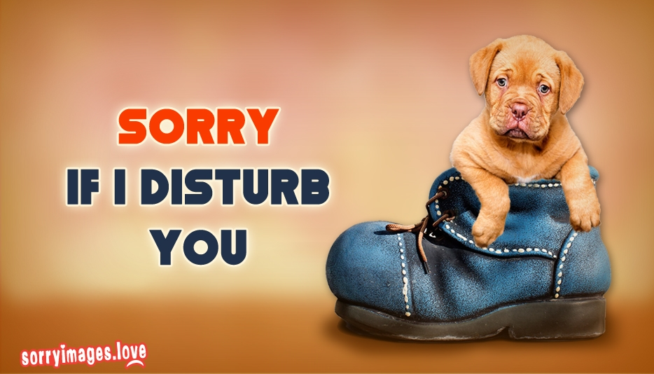 Sorry If I Disturb You  - Sorry Images for Apology