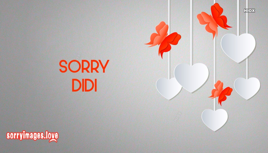 Sorry Image For Didi