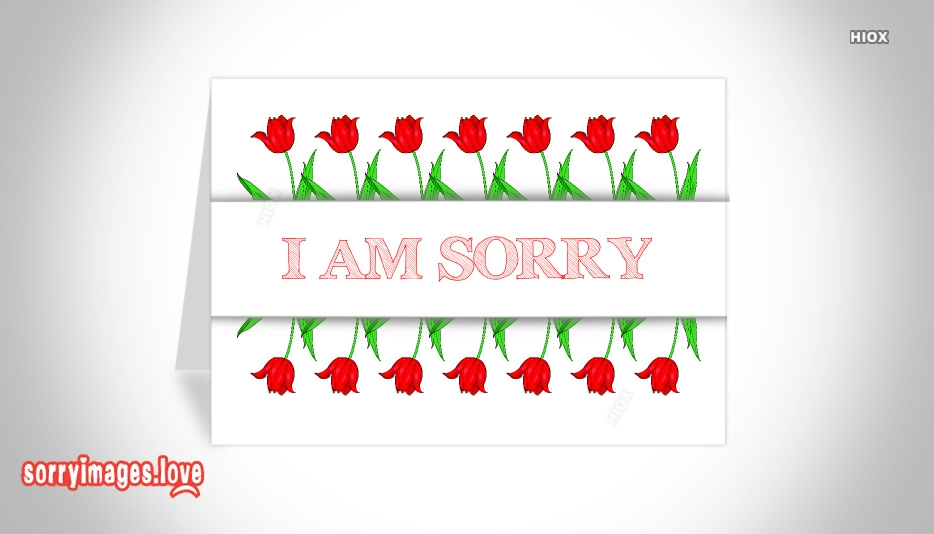 Sorry Image For Flower