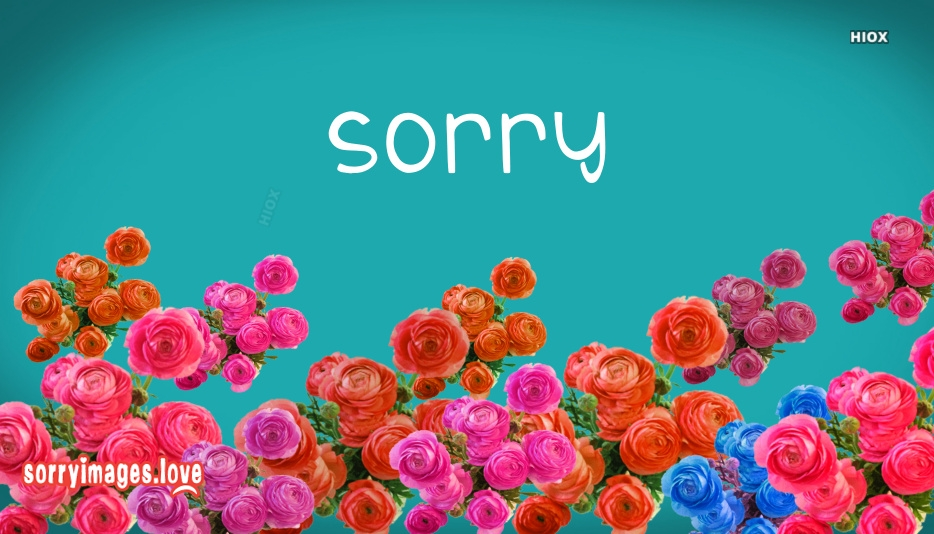 Sorry Images for Hd