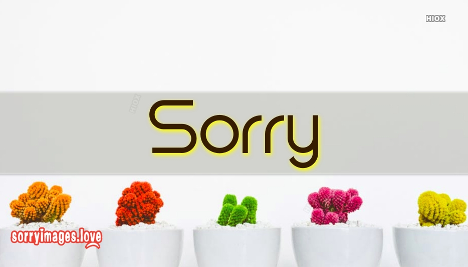 Sorry Images for Latest
