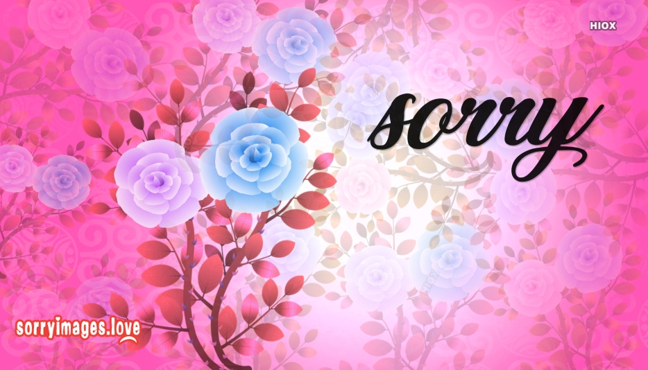 Sorry Image Wallpaper