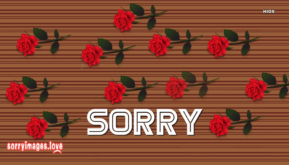Sorry Image With Red Rose