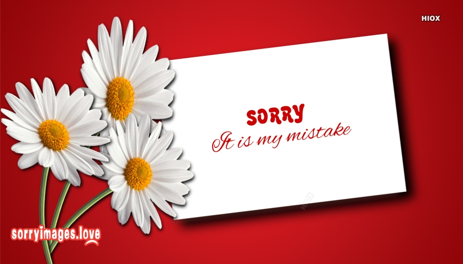 Sorry It Is My Mistake