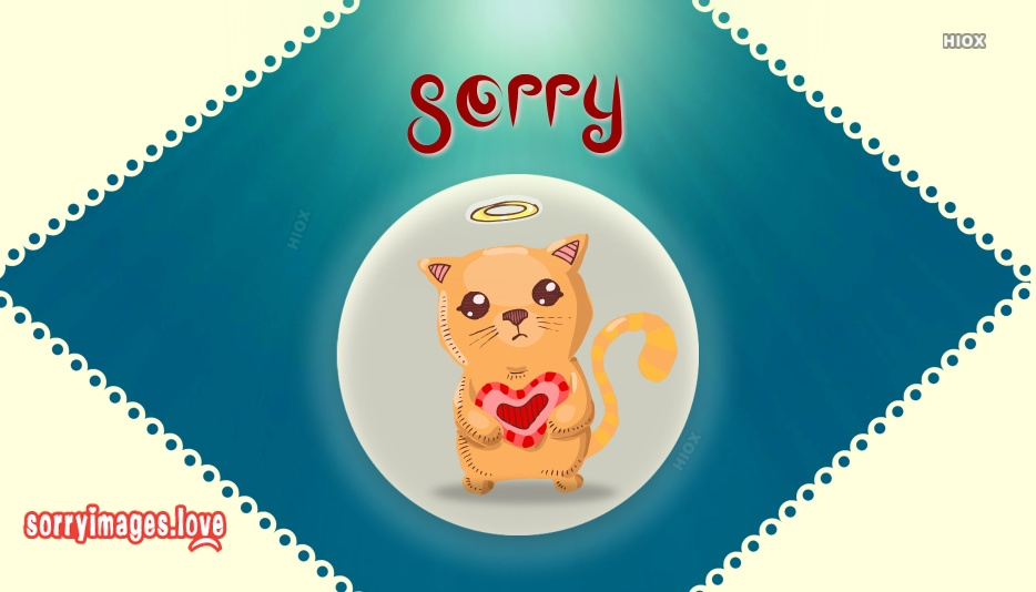 Sorry Kitty Images