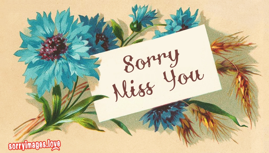 Sorry Miss You - Sorry Missing You Images