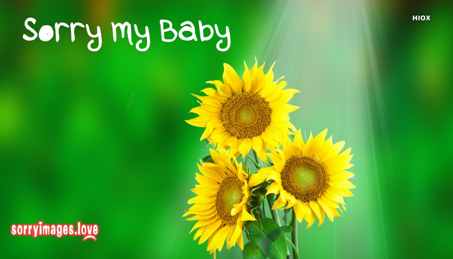 Sorry My Baby Images