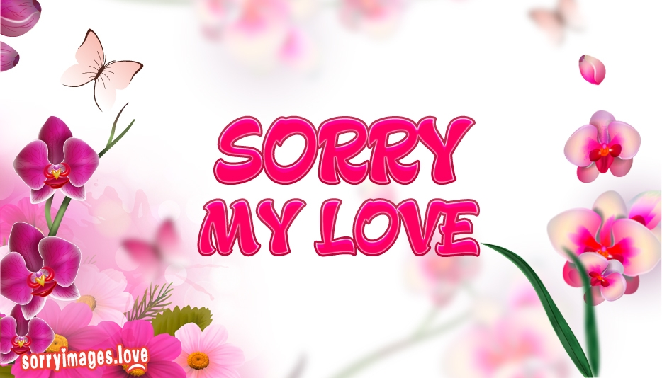 Sorry Images for Wife
