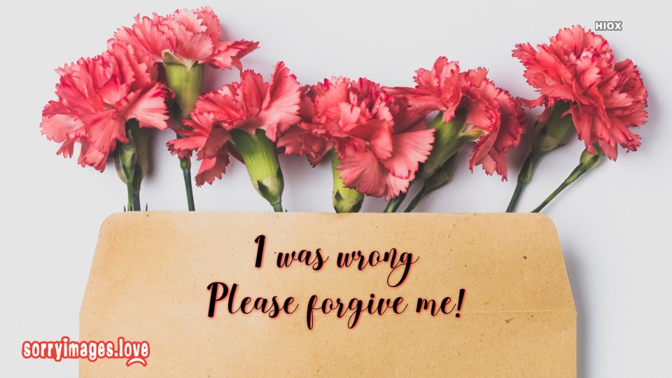 Sorry Note for Forgiveness