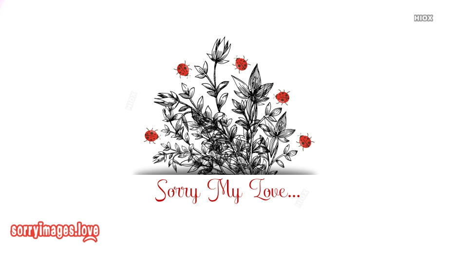 Sorry Images for Ex Girlfriend