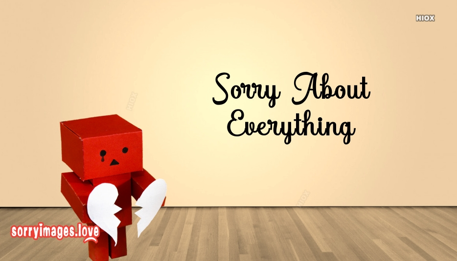 Sorry for Everything Images