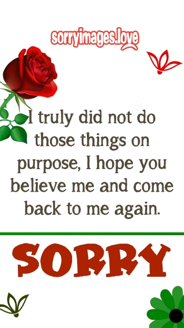 Heart Touching Sorry Quotes