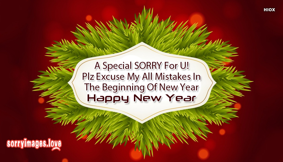 Sorry Sms For New Year