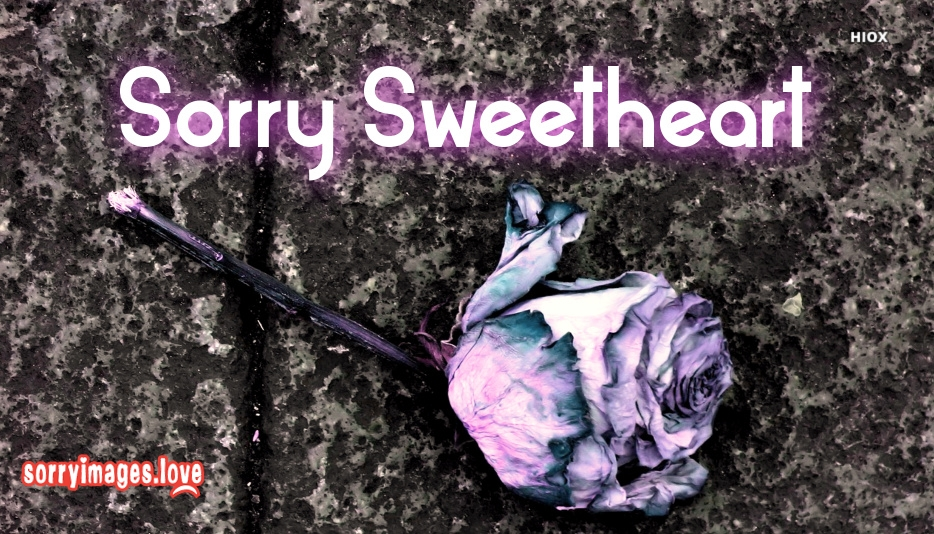 Sorry Sweetheart Images