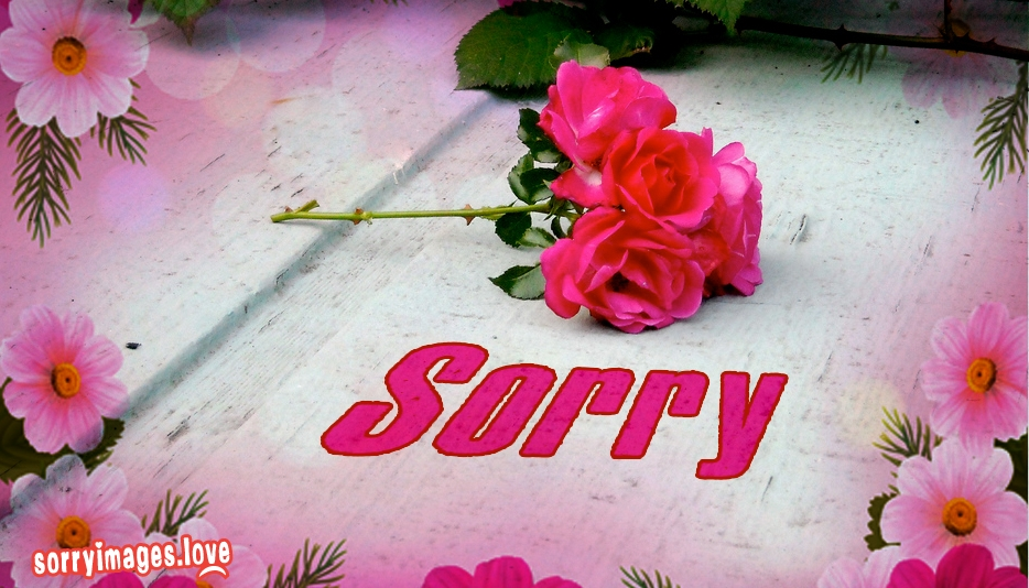 Sorry Symbol For Facebook  - Sorry Images for Whatsapp
