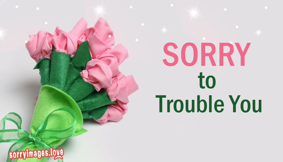 Sorry To Trouble You - Sorry Images for Trouble