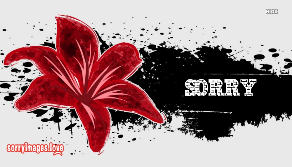 Sorry Wallpaper For Facebook
