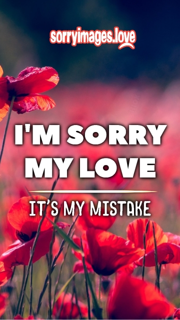 Sorry Wallpaper For Whatsapp Download
