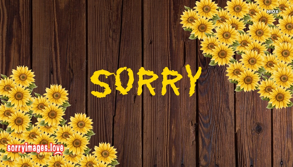 Sorry Wallpaper Images Download