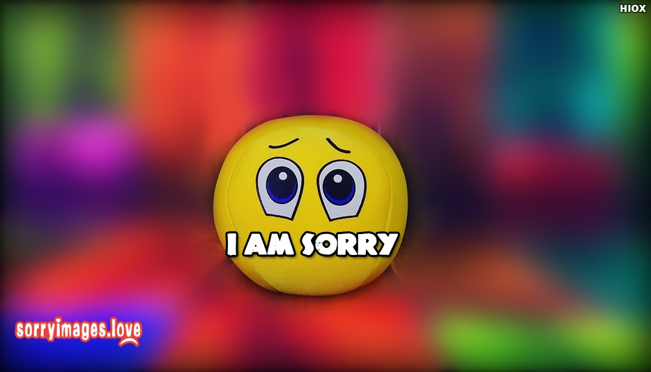 Sorry Whatsapp Status - I Am Sorry