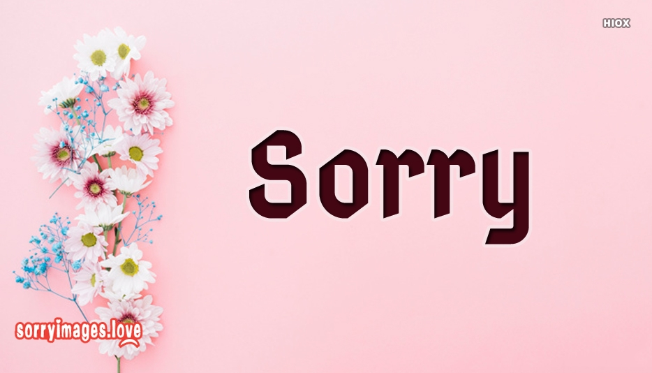 Sorry With Flower Image