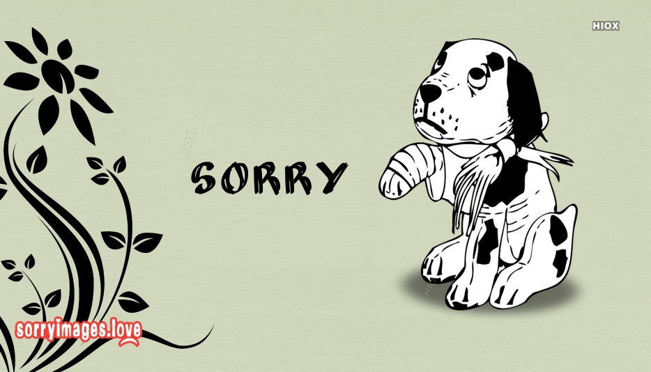 Sorry With Puppy