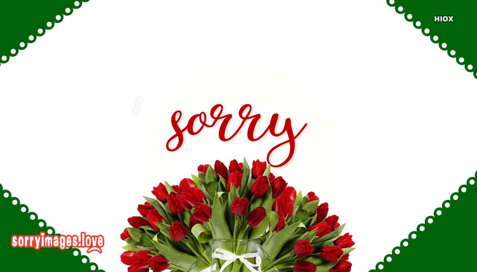 Sorry Poster Images